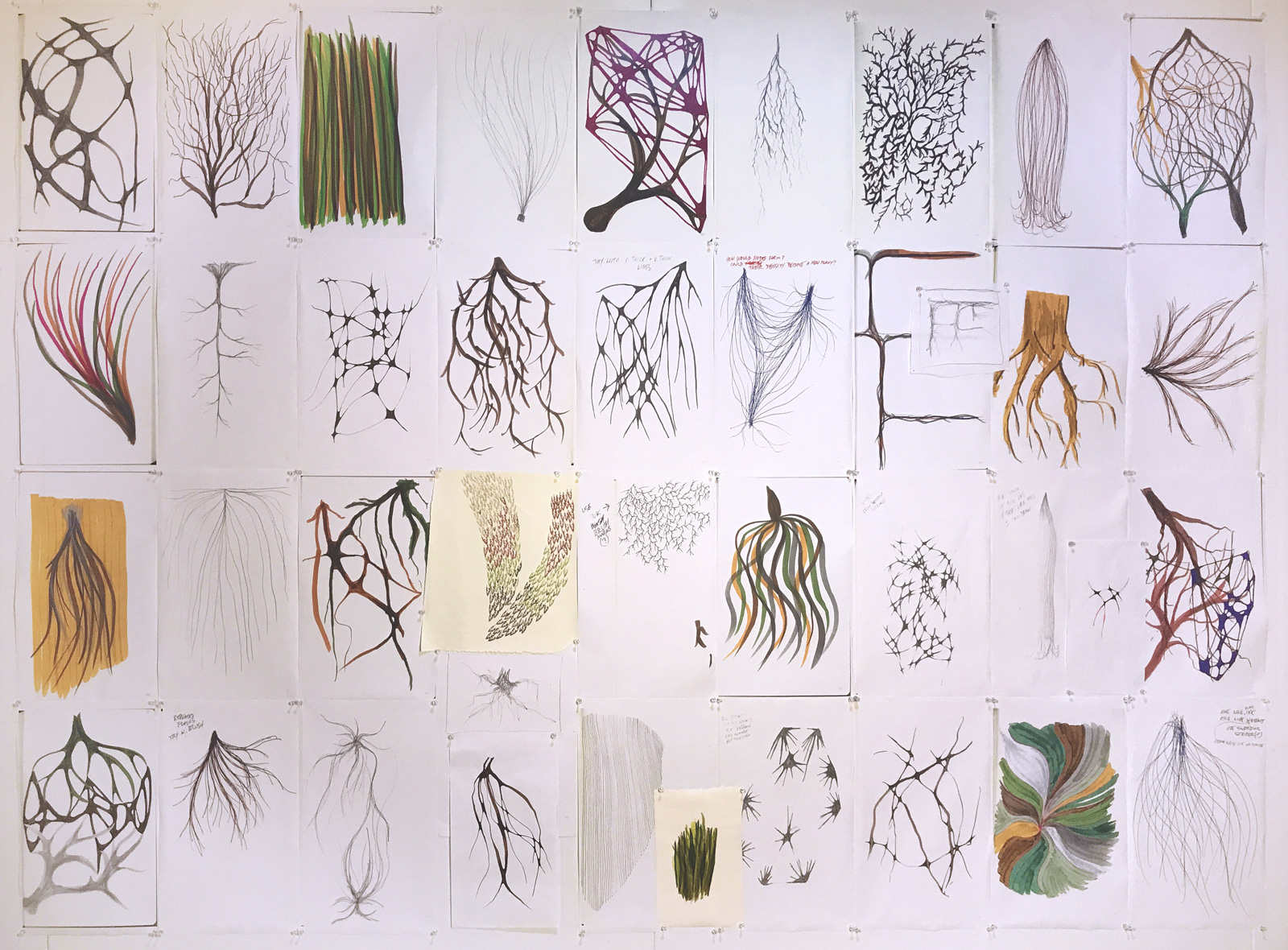 """Root Matrix,"" 2018, drawings and laser prints, dimensions variable"